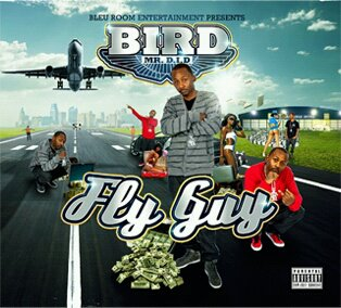 bird-fly-guy